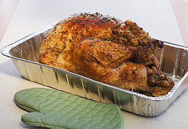 Close up of Thanksgiving turkey in pan