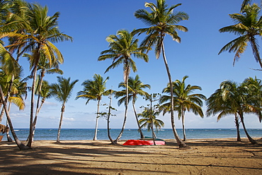 Red boat under palm trees on beach in Las Terrenas, Dominican Republic