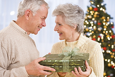 Senior couple holding Christmas gift