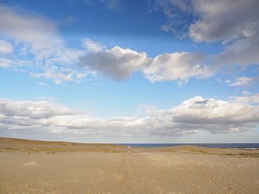Beach in Myall Lakes National Park, Australia