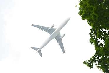 View directly below airplane in flight
