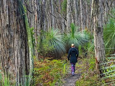 Woman walking in forest in South Australia, Australia