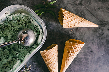 Mint chocolate chip ice cream with cones