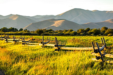 Fence through field in Picabo, Idaho, USA