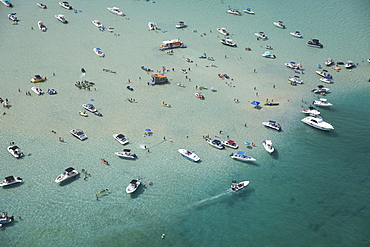 Aerial view of boats in sea in Miami, Florida, United States of America
