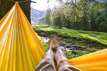 Man's legs in hammock by trees