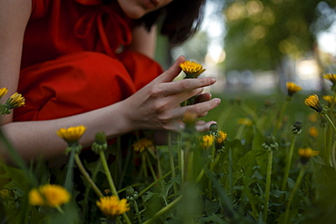 Hand of woman picking flowers