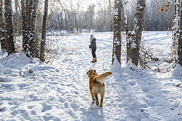 Senior woman walking with dog through snow