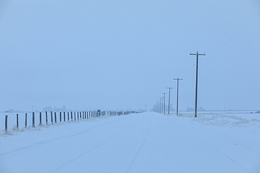 Power lines by snow on highway
