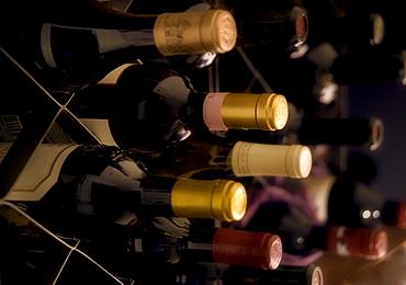 Still life of wine bottles