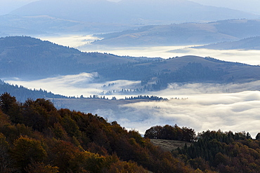 High Quality Stock Photos Of Carpathian Mountains