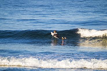 Teenage boy surfing
