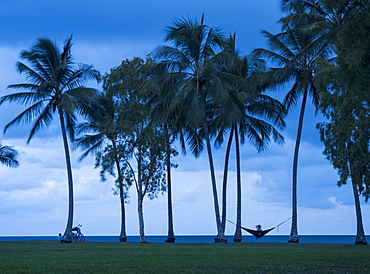 Woman sitting in hammock between palm trees