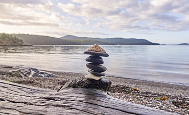 Pebbles stacked on driftwood on beach