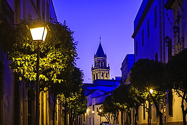 Spain, Andalusia, Seville, Old town street at dusk
