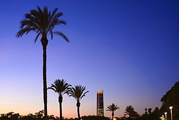 Spain, Andalusia, Seville, View along Paseo Alcalde Marques De Contadero