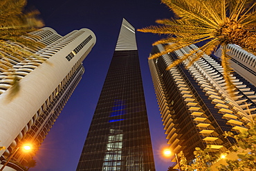 USA, Florida, Miami Beach, Low angle view of skyscrapers and palm trees