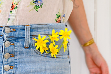 Close-up of woman with yellow flowers in jeans pocket