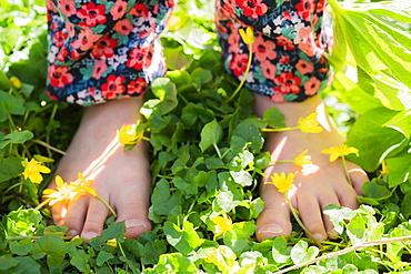 Close-up of girls (6-7) bare feet standing on meadow with yellow flowers