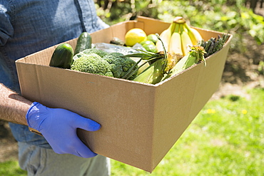 Delivery person holding box with fruit and vegetables