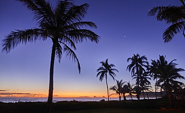 USA, Hawaii, O'ahu, Kailua Beach, Silhouette of palm trees at sunset