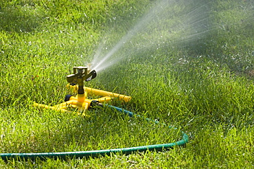 Sprinkler on a green lawn