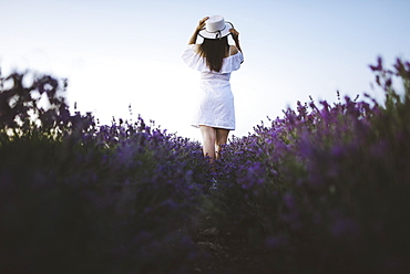 France, Woman in white dress in lavender field