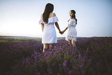 France, Women in white dress in lavender field