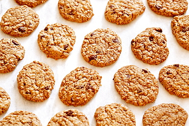 Oatmeal cookies with chocolate chips