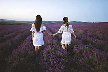France, Young women in white dresses holding hands in lavender field