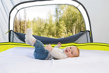 USA, Utah, Uinta National Park, Baby boy (6-11 months) lying in tent, forest in background