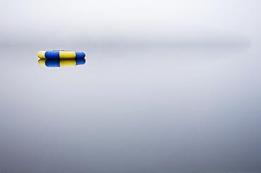 Floatie on foggy lake