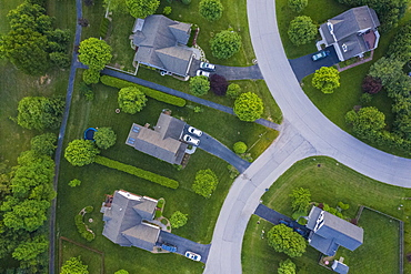 United States, Virginia, Aerial view of suburban houses