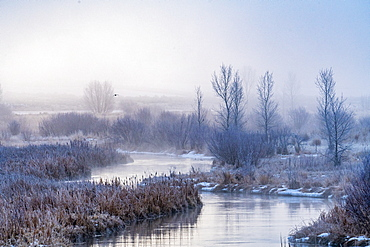 United States, Idaho, Bellevue, Frosty river at dawn