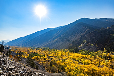 United States, Idaho, Sun Valley, Yellow foliage in mountain valley in sunny, autumn day