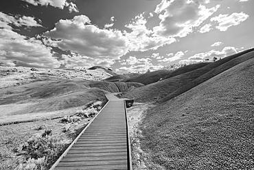 United States, Oregon, Boardwalk leading through hilly landscape