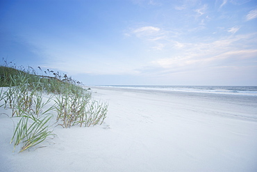 North Carolina, Topsail Island, Onslow Beach, Empty beach with grass