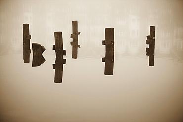 Wooden columns in water, Norfolk, Virginia, USA