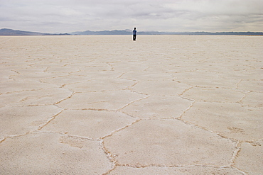Person standing on salt flat, looking at view, rear view, Salar de Arizaro, Salta Province, Argentina