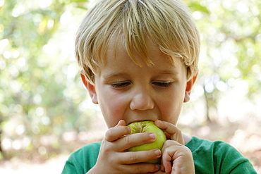Portrait of boy eating green apple on fruit farm