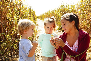 Mother with two children in field with crops