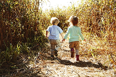 Boy and girl holding hands in field with crops