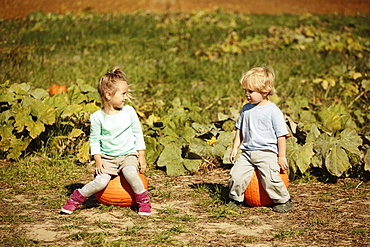 Brother and sister sitting on pumpkins in field