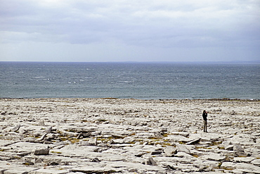 Man on rocky shore, The Burren, County Clare, Ireland