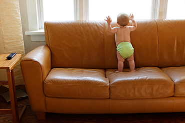 Baby boy playing on sofa