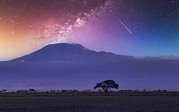 Africa, Kenya, Milky way and falling star over Mount Kilimanjaro in Amboseli National Park