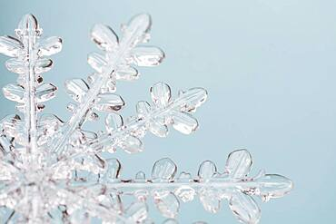 Close-up of snowflake on light blue background