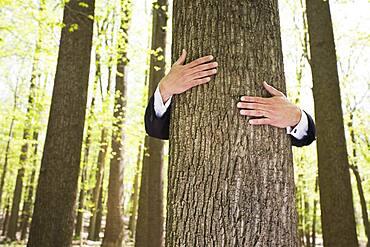 Tree hugging business executive