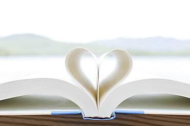 Book pages folded in heart shape