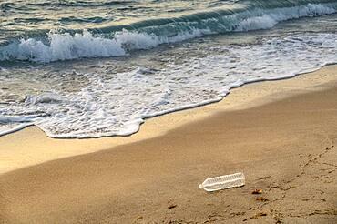 USA, Florida, Boca Raton, Plastic bottle on beach